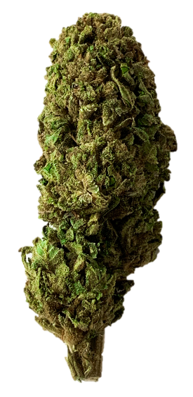 Cannatonic, Greenhouse, CBD >10%, THC<1%